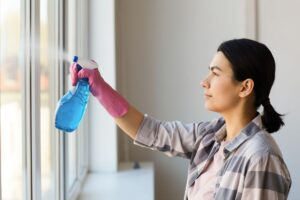 Mansfield TX Window Cleaning (5)